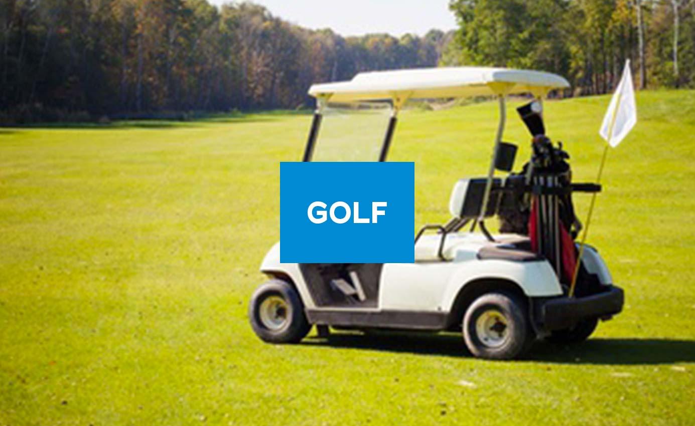 golf-golfette-voiturette-electrique-rems-batterrie-industrielle
