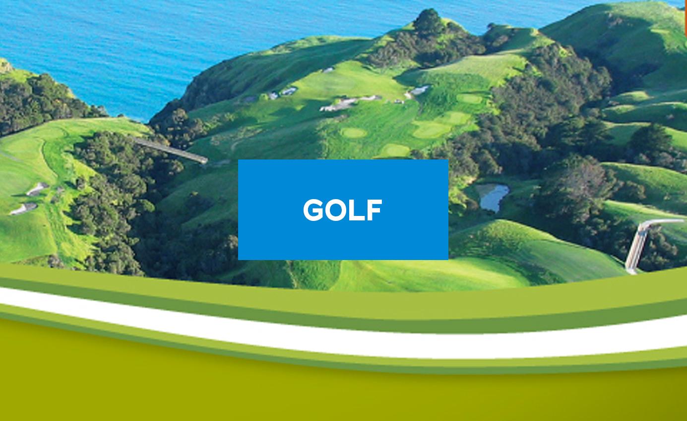 golf-batterrie-rems-batterrie-industrielle
